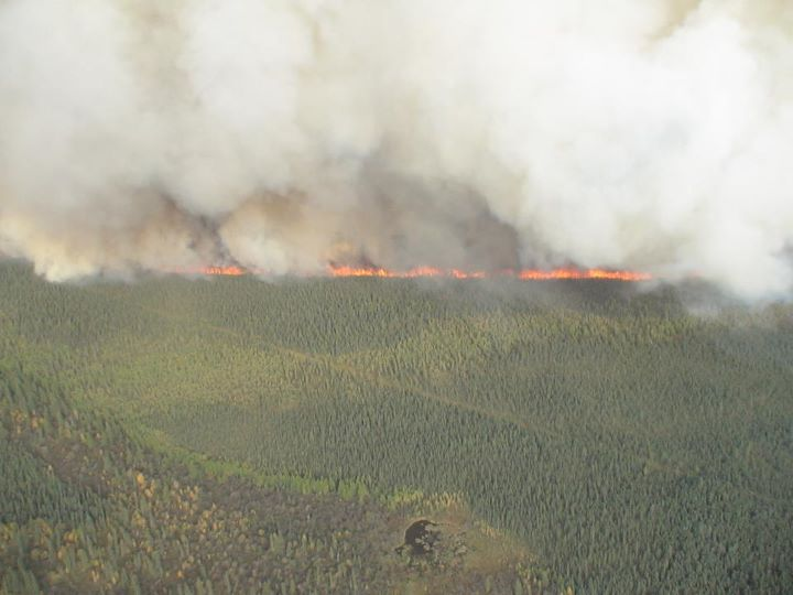 Image of a forest fire and smoke