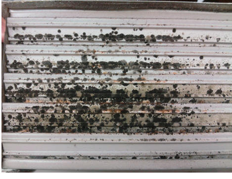 Image of mould on an air confitioning system