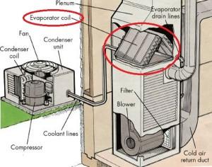 evaporator coil1