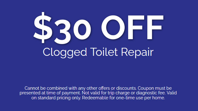 Discount on Clogged Toilet Repair